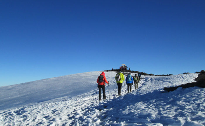 6 Days Rongai Route - Kilimanjaro Climb
