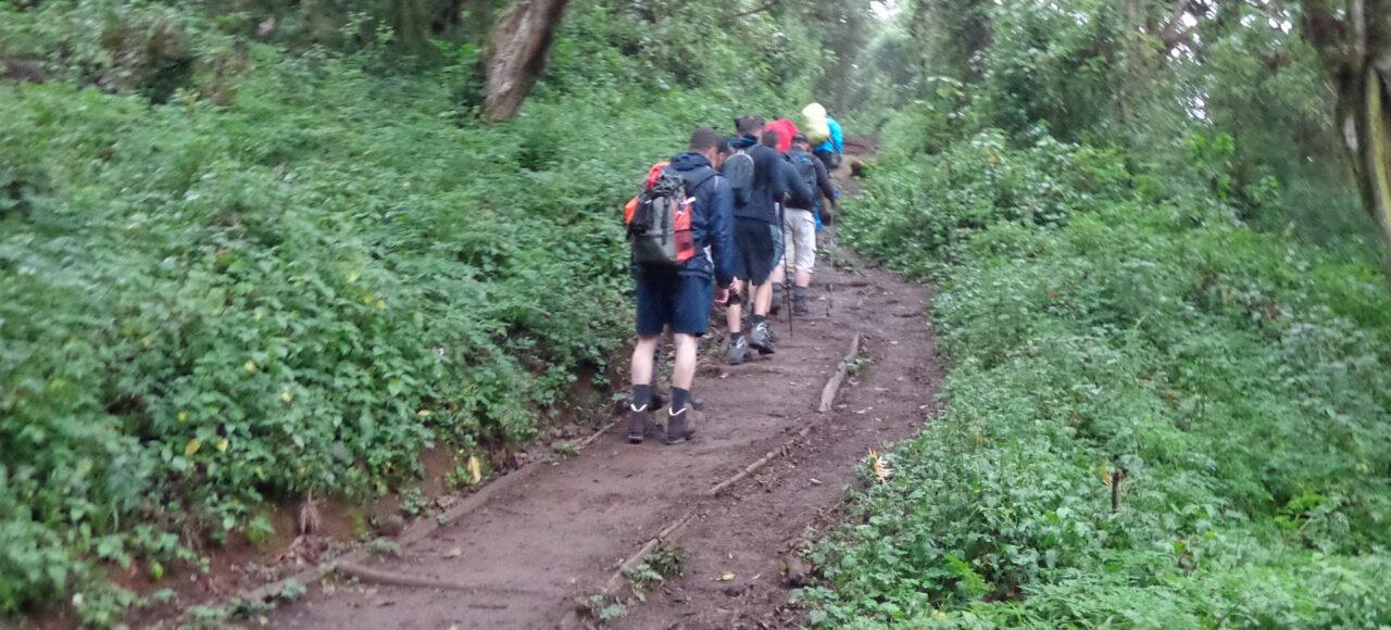Kilimanjaro day hike