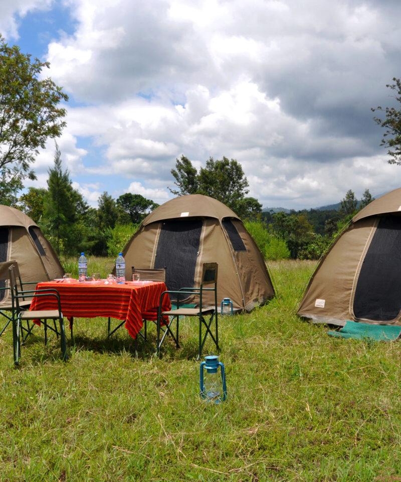tanzania budget safari experiences